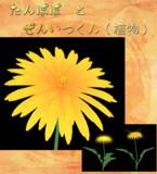 【アクセサリ配布】たんぽぽと珍妙な蒲公英